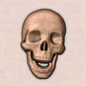 3D Printed Skull STL