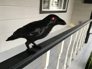 3D Printed Crow